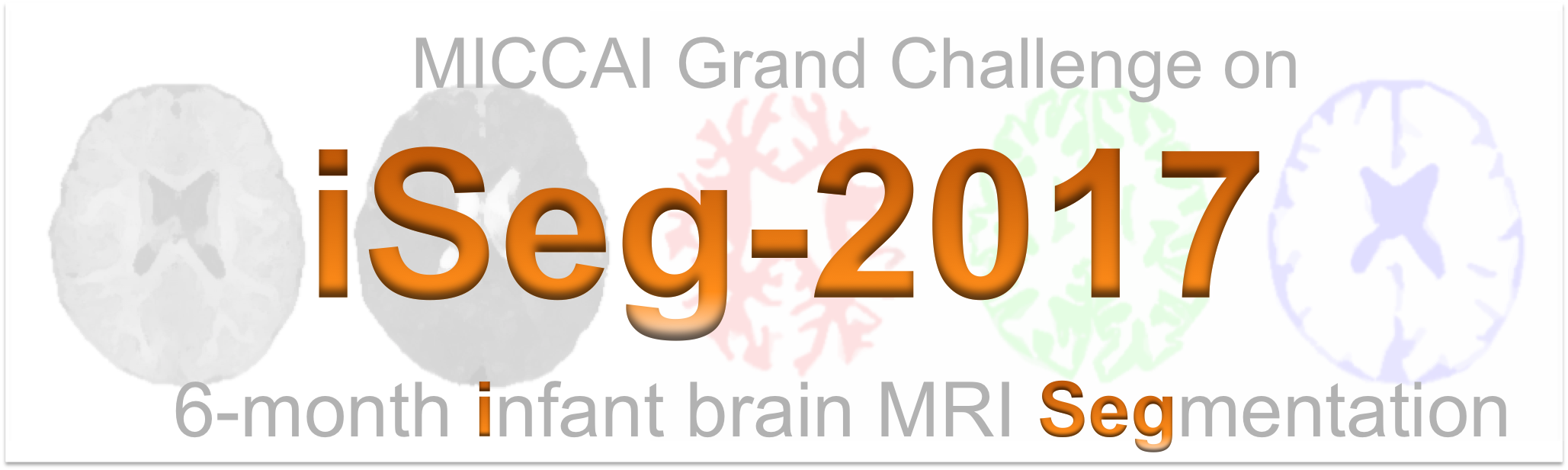 MICCAI Grand Challenge on 6-month Infant Brain MRI Segmentation