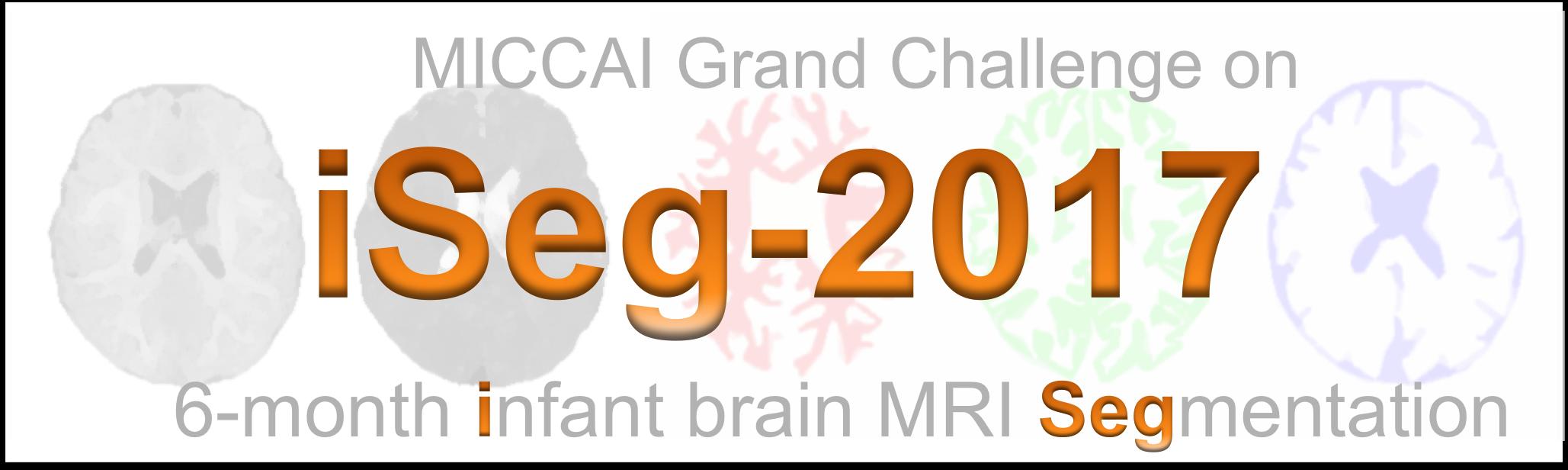 MICCAI Grand Challenge on 6-month Infant Brain MRI Segmentation